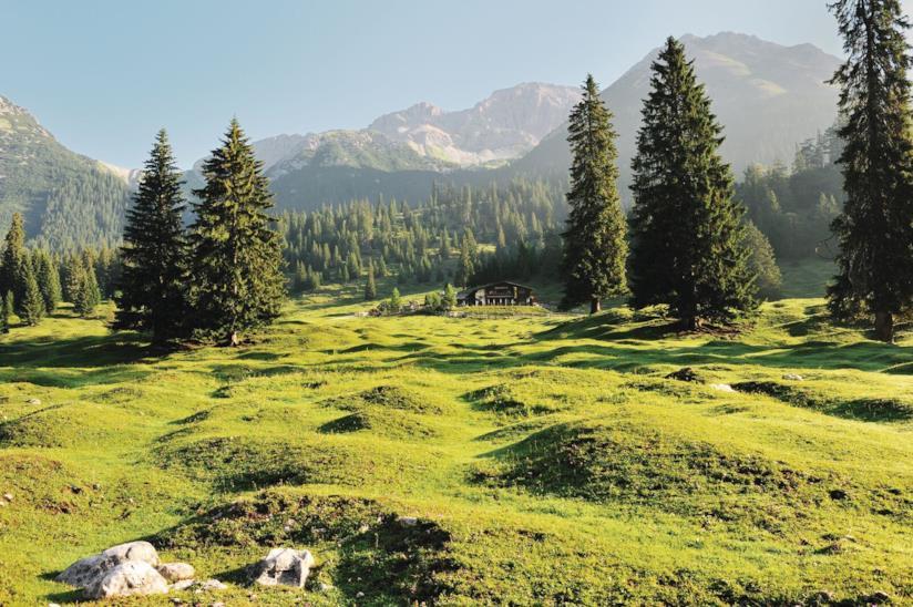 Natura nei pressi di Seefeld