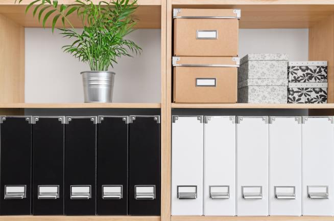 Ripiani di libreria per home office con scatole, schedari per documenti e una pianta verde