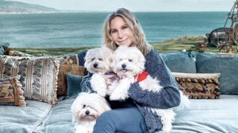 Barbra Streisand ed i suoi tre cani Miss Scarlett, Miss Violet e Miss Fanny