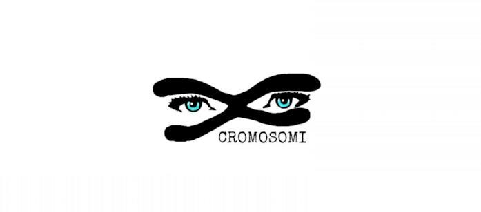 Cromosomi: cover del progetto di Claudia Larì