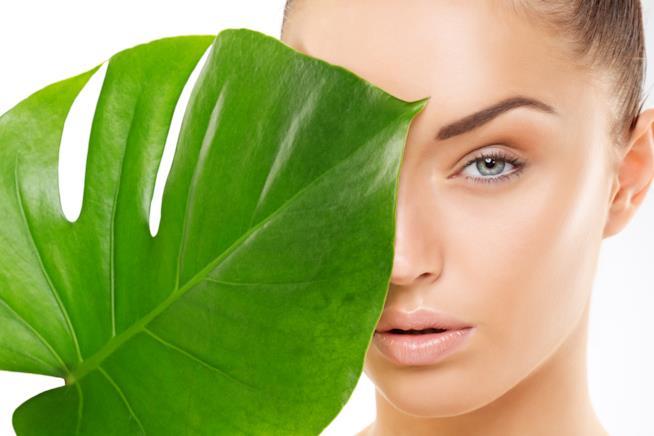 Primo piano del viso di una ragazza, truccata leggera, metà viso coperto da una foglia grande verde
