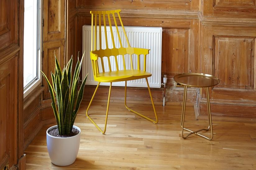 Una sanseveria in vaso vicino ad una sedia