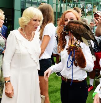 Camilla e il falco Rufus a Wimbledon