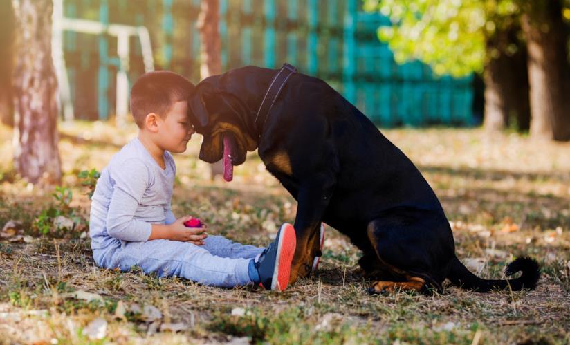 Un bambino e un cane.