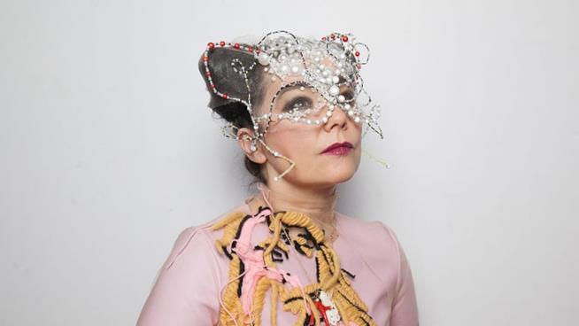 La cantante Björk