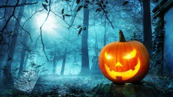 Zucca di Halloween illuminata e posizionata in una foresta