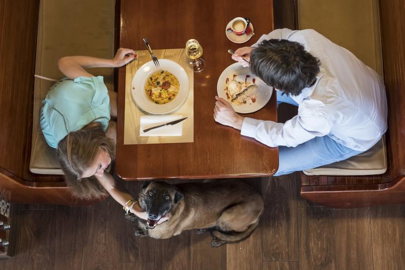 Cane accucciato vicino al tavolo dei proprietari in un ristorante