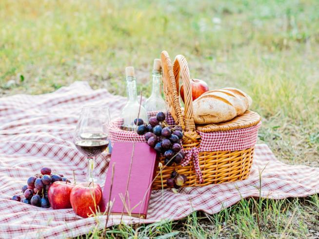 un prato, una tovaglia a quadri, sopra un cestino da pic nic con due bicchieri di vino, della frutta e del pane