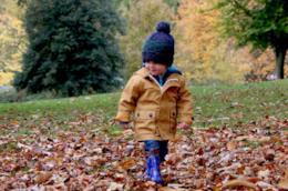Bambino nelle foglie