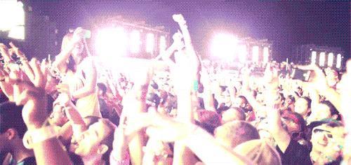 Fan che ballano a un concerto