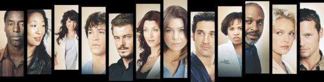 Grey's Anatomy il gruppo di attori del cast riunito