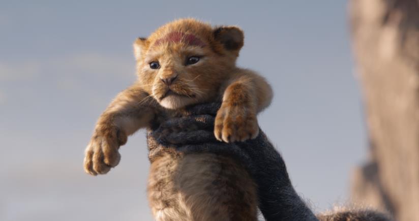 Un'immagine di Simba nel remake de Il re leone