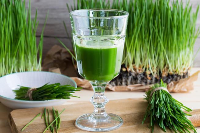 Bicchiere con il succo di erba di grano
