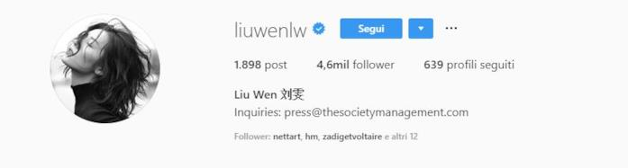 Profilo instagram Liu Wen