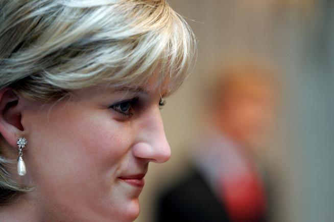 Un tributo a Lady Diana