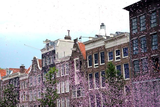 Amsterdam Gaypride 2014