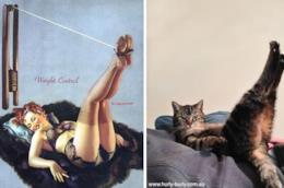 Un'illustrazione di una pin-up ed un gatto in pose identiche
