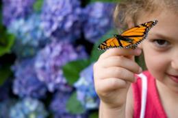 Una bambina con una farfalla