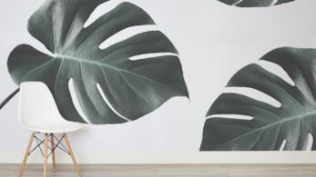 Parete di casa rivestita con wallpaper in puro stile jungle