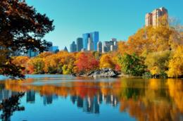 Autunno a New York, tra foliage e eventi imperdibili