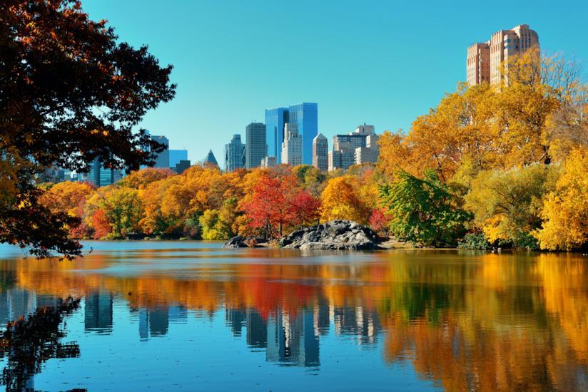 Autunno a New York, tra foliage e eventi imperdibili