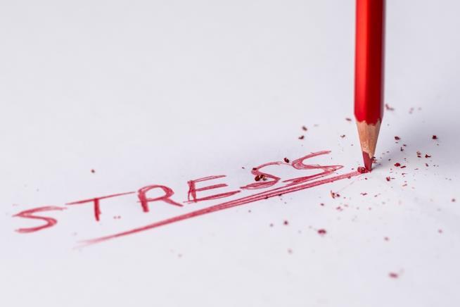 Lo stress aumenta i livelli di cortisolo