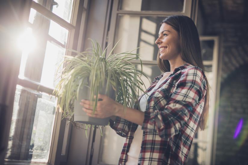 Una donna sposta un vaso di nastrino