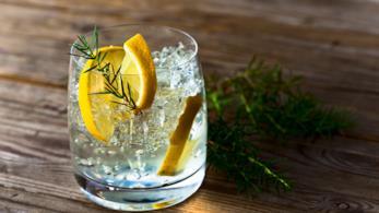 Un bicchiere di gin con lime e foglie di ginepro