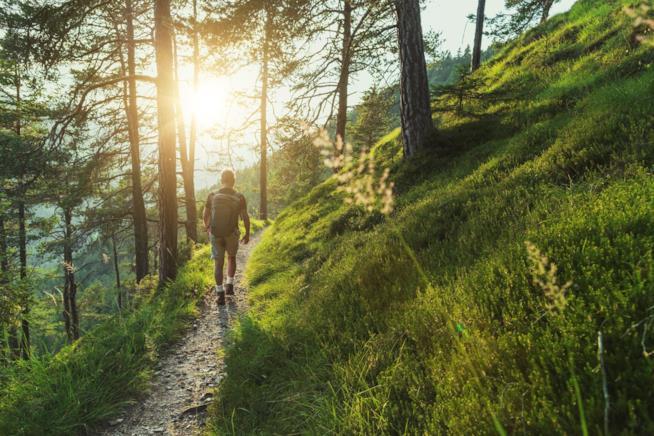 Un uomo cammina lungo un sentiero boscoso