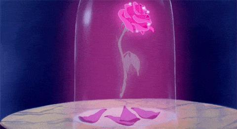 La Rosa della Bestia