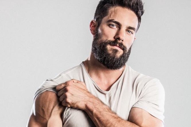 I muscoli del braccio di Brant Daugherty