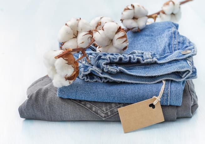 Vestiti e cotone