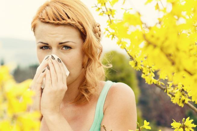 I sintomi delle allergie alle graminacee