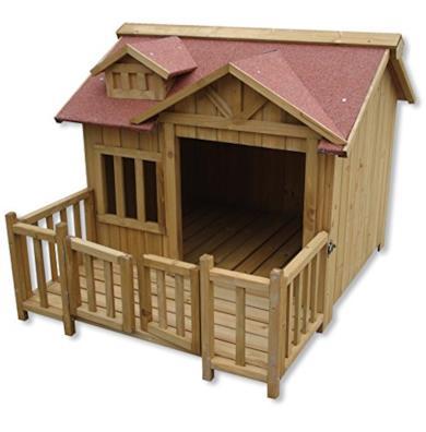 Cuccia e capanna per cani