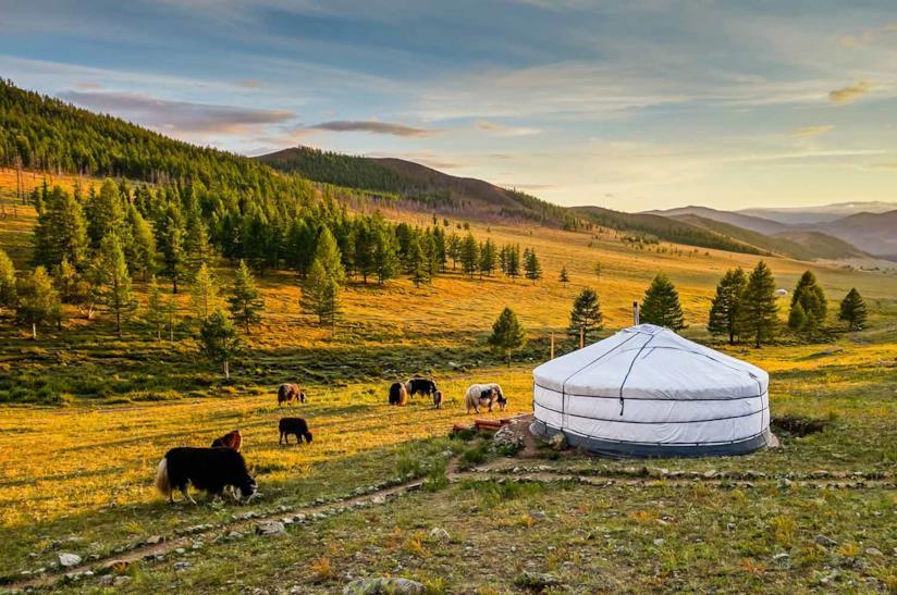 Ger e trekking in Mongolia