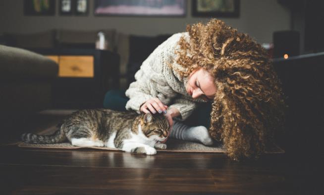 Donna accarezza il suo gatto