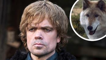 Un character poster di Tyrion Lannister