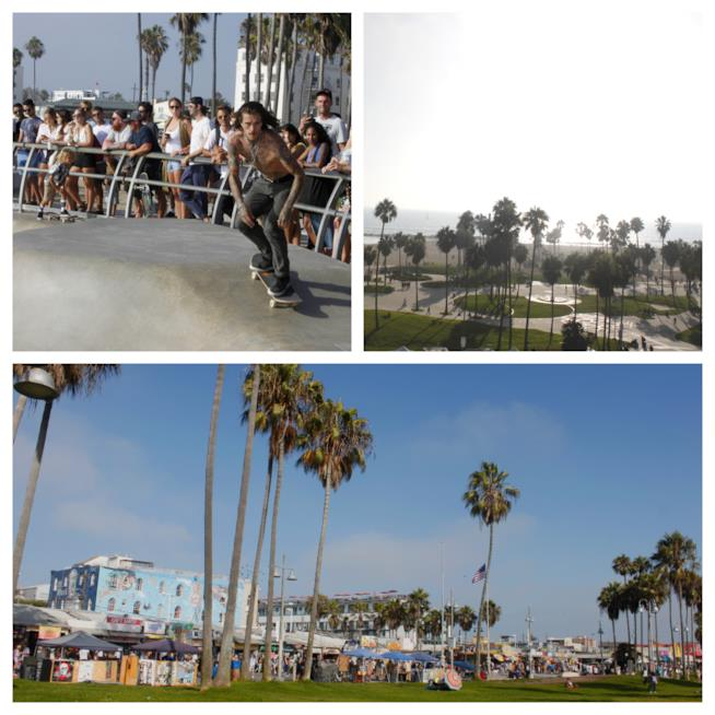 Scorci di Venice Beach