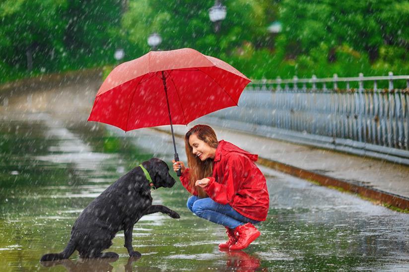 Ragazza accucciata con il proprio cane sotto la pioggia