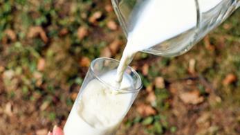 Latte di riso in bottiglia e bicchiere di vetro