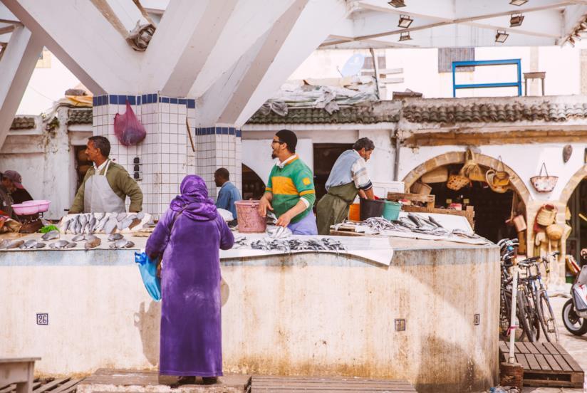 Il souk del pesce di Essaouira