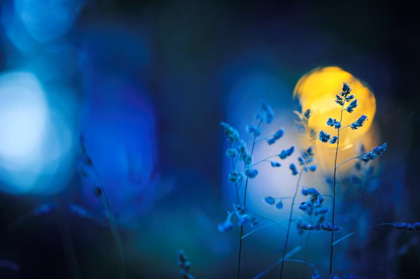 Paesaggio notturno