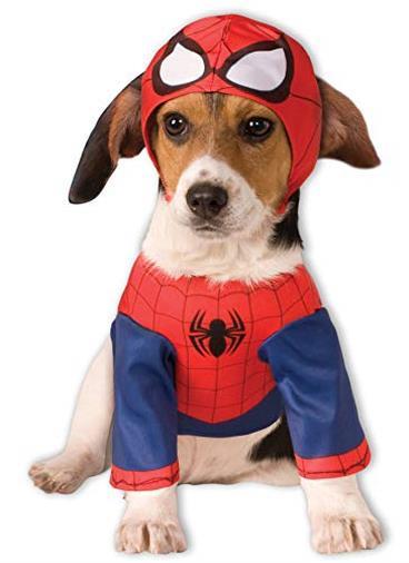Costume Spiderman Dog