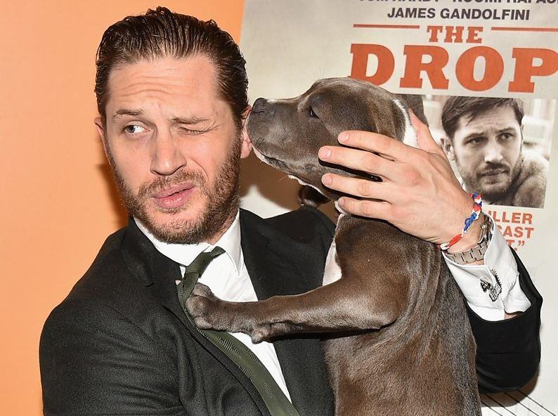 Tom Hardy con un cane