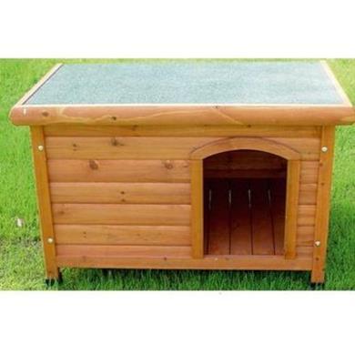Canile Shelter