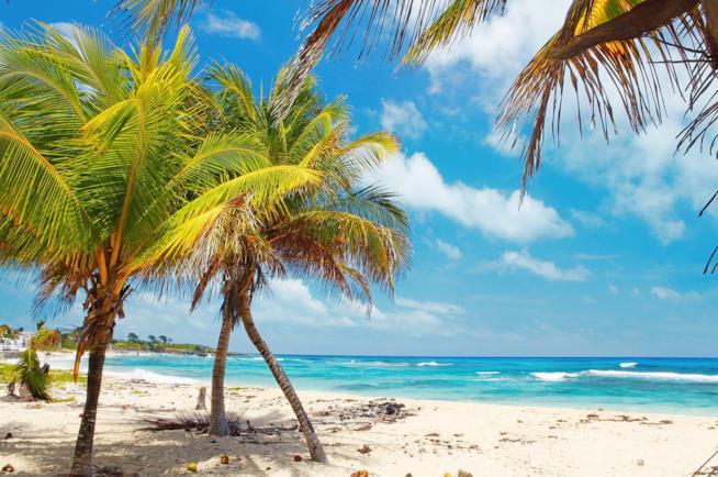 Spiaggia in Giamaica
