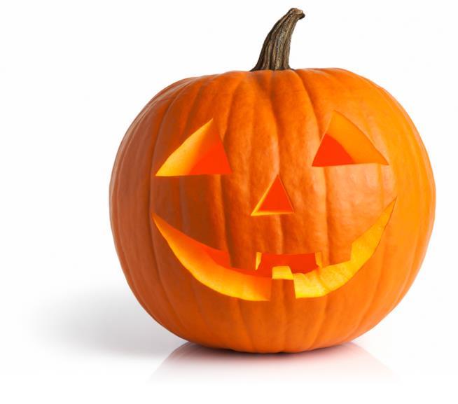 Zucca di Halloween in primi piano