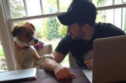 L'attore Chris Evans con il suo cane