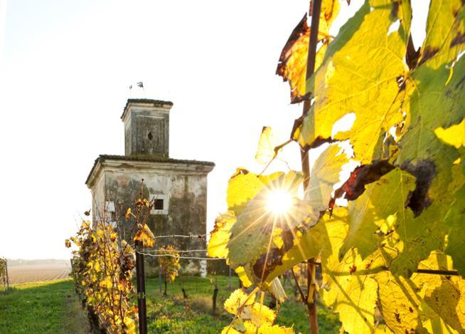 Strada del Vino Franciacorta