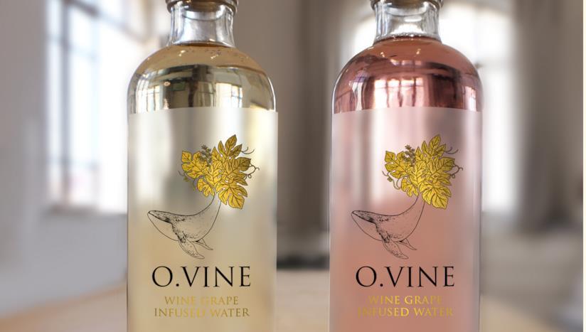 Due bottiglie di acqua al vino